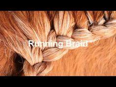 Miniature Horse Mane Braiding Tutorial- Running and Dutch Horse Mane Braids, Horse Hair Braiding, Tail Braids, Horse Tail, Horse Anatomy, Horse Show Clothes, Wedding Braids, Mane Event, Horse Grooming