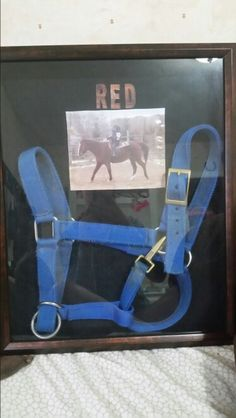 All you need is your horses halter and picture. It only took me 10 minutes to make this and its a great way remember a horse that has passes away