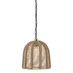 Found it at Wayfair - Jamarion 1 Light Pendant