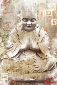 Buddhist Monk Póster