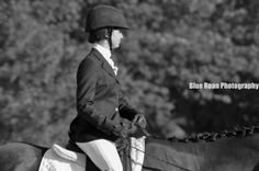 Dressage horse show horse photography blue roan photography