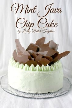 I cannot even begin to explain how much I would not want to share this gorgeous Mint Java Chip Cake from Living Better Together. Gorgeous!