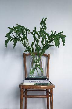 Vintage chair    Thonet