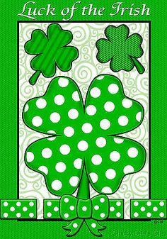 Custom Decor Garden Flag Luck of the Irish St Patrick's Day NEW