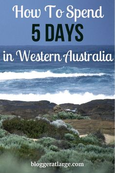 I just spent 5 glorious days in the gorgeous Margaret River region. Here's my road trip itinerary of where we went and stayed Margaret River Western Australia, Perth Western Australia, Australia Travel, Australia East Coast, My Road Trip, Cuba Travel, Travel Deals, Travel Tips, France Travel