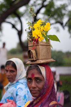 Pandharpur Wari - Women carry Tulsi (basil) plants on their head to offer at the temple
