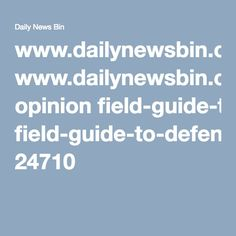 www.dailynewsbin.com opinion field-guide-to-defending-hillary-clinton-against-fake-scandals 24710