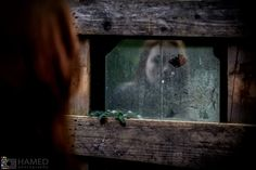 ghost in mirror / Fine Art  hamedphotography  Germany / Bonn  http://STRKNG.com/photographer-hamedphotography.54367008a255830188kxpepsut54367008a25a3.html    #Fine_Art #Germany #Bonn #bestof #international #contemporary #photography #strkng #strkng_stream