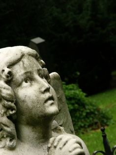 Cemetery Angel Praying in the Rain, Bratislava