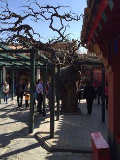 China Trip, China Travel, Sidewalk, Walkway, Walkways