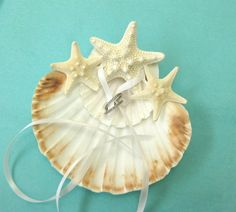 A Double Scallop Shell with Natural White Starfish and Ribbons. A perfect ring bearer for a beach wedding! A large white scallop with touches