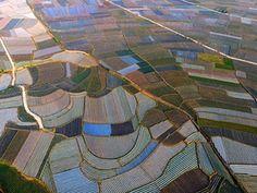 An aerial photograph of farmland in Tianzhou township, Tianyang county, Guangxi province, southern China