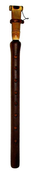 The duduk (Armenian: Դուդուկ), traditionally known since antiquity as a Ծիրանափող (Tsiranapogh) is a traditional woodwind instrument indigenous to Armenia.