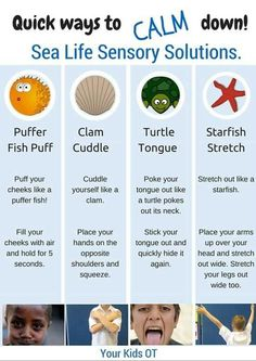 Superstars Which Are Helping Individuals Overseas Quick Ways To Calm Down Sea Life Sensory Solutions Includes A Free Printable At Your Kids Ot Emotional Regulation, Self Regulation, Social Emotional Learning, Social Skills, Social Issues, Social Anxiety, Behaviour Management, Classroom Management, Anger Management Activities For Kids