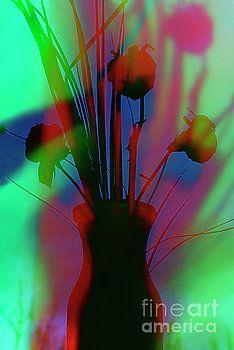 Colorfy Flowers. by Alexander Vinogradov