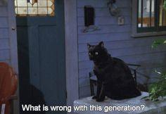 I don't know, Salem. I don't know...
