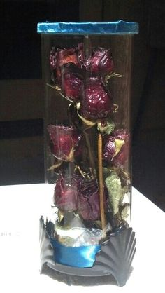 My 1st dozen roses ever, that Sam gave me for Valentine's day. To preserve them, I poked a paper clip thru the stems and hung them upsidedown. Doing so just before they welted over, so I wouldn't lose as many petals. Finally I figured out what I wanted to put them in, but I was afraid that it would end up like potpourri getting them in. So I coated them twice with clear acrylic gloss. Not only making them more durable, it also enhanced the color. I love it.