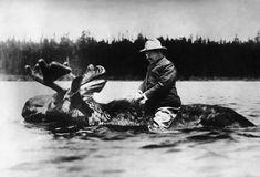 Une photo qui démontre l'amour de la nature du président qui parfois pouvais être sujet de contreverse si on pense entre autres aux safaris qu'il a entreprit en 1909 après son deuxième mandat.  http://www.history.com/photos/teddy-roosevelt/photo11