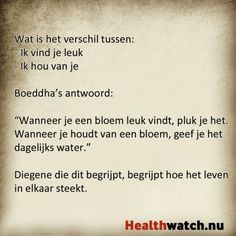 Leuk vinden of houden van Sef Quotes, Words Quotes, Wise Words, Sayings, Qoutes, Special Love Quotes, Dutch Quotes, Sarcasm Humor, Leadership Quotes