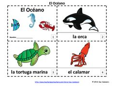 Spanish Ocean Marine Life 2 Emergent Reader Booklets by Sue Summers - Each booklet contains 16 pages: the title page and 15 additional pages. One contains text and images, the other contains text only so students can sketch and create their own versions of the booklets.