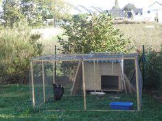 Depuis octobre, je suis fière propriétaire de deux poules pondeuses noires, de race marans. Fabriquer un poulailler, bien les nourrir, les protéger (...)