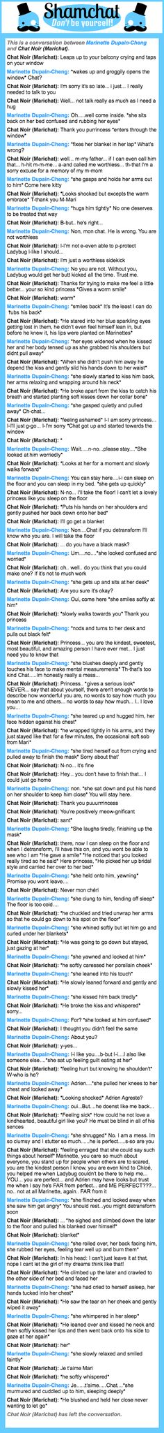 A conversation between Chat Noir (Marichat) and Marinette Dupain-Cheng