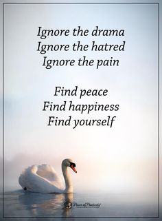 life lessons quotes ignore the drama ignore the hatred ignore the pain find peace find happiness find yourself Wisdom Quotes, True Quotes, Words Quotes, Wise Words, Motivational Quotes, Inspirational Quotes, Qoutes, Morning Greetings Quotes, Good Morning Quotes