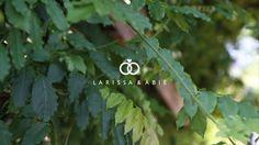 Marriott Long Wharf: Larissa & Abie  #mcelroyweddings #relivethemoment #weddingvideo #weddingcinematography #cinematicweddingvideography #wedding #bostonweddingvideography #marriottlongwharf