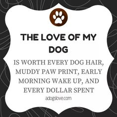 The love of my dog. Is worth every dog hair, muddy paw print, early morning wake up, and every dollar spent. I Love Dogs, Puppy Love, Cute Dogs, Animal Crossing, Jiff Pom, Golden Retriever, Animal Quotes, Pet Quotes, Rescue Dog Quotes