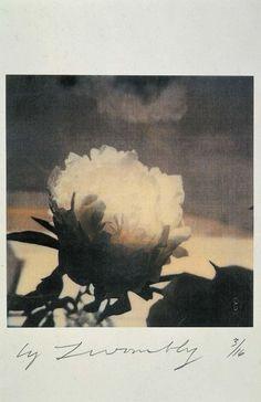 """Towmbly. «Si (...) las rosas blancas significan para mí """"fidelidad"""", es que he dejado de verlas como rosas: mi mirada las atraviesa para ver más allá de ellas una virtud abstracta; las olvido y no tengo en cuenta su abultamiento espumoso, su dulce perfume de la declinación; ni las he percibido. Esto quiere decir que no me he comportado como artista. Para el artista, el color, el aroma, el tintineo de la cucharita en el platillo, son cosas en grado supremo. (...)» Sartre, Qué es la…"""