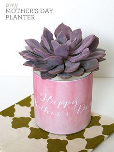 6th Street Design School | Kirsten Krason Interiors : Simple DIY Mother's Day Planter Gift #Mother's #Mother'sDay #planter