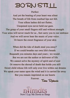 Beautiful poem in memory of a stillborn baby Stillborn Quotes, Grieving Quotes, Infant Loss Awareness, Pregnancy And Infant Loss, Pomes, Child Loss, Loss Quotes, Angels In Heaven, Hearts