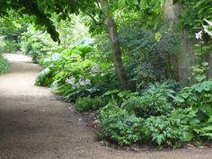 Oxford Botanic Gardens by tejvanphotos, via Flickr