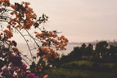 PE // 0045 by NatePiper #ErnstStrasser #Peru Summer Sunset, Pacific Coast, Late Summer, Peru, Skyline, Turkey