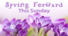 Spring Forward This Sunday - Don't forget to set your clocks forward this Sunday! Time Cartoon, Cartoon Images, Clocks Going Forward, National Calendar, Daylight Savings Time, Holiday Traditions, Teacher Gifts, Image Search, Sunday