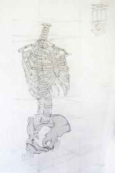 Analytic Drawing by Jesús Guédez, via Behance