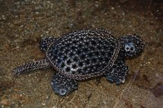 Turtle #3 - Chainmail Sculpture - Gallery - TheRingLord