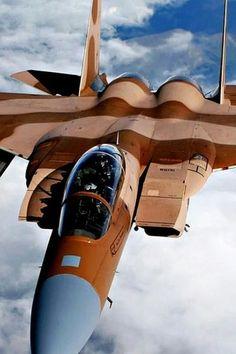 F-15 AGGRESSOR.