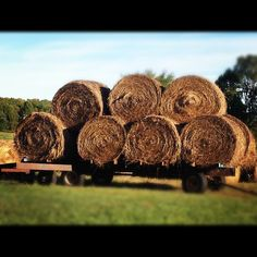 Farm Living - Hay Bales I've loaded a few of those. ; )