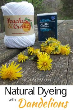Natural Dyeing with Dandelions. Learn how to Dye Yarn or Fabric Yellow naturally using dandelion flowers. Burlap Crafts, Yarn Crafts, Fabric Crafts, Natural Dye Fabric, Natural Dyeing, Dyeing Yarn, Dyeing Fabric, Gel Medium, Medium Art