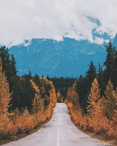 The transition from summer to winter  Photo by @briannguyen #MyJasper