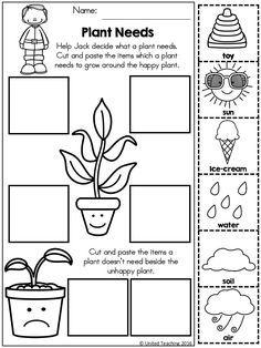 Science Worksheets for Kids. 20 Science Worksheets for Kids. Free Science Worksheets for Kids 1st Grade Science, Kindergarten Worksheets, Kindergarten Activities, Science Activities, Science Crafts For Kids, Science Worksheets, Worksheets For Kids, Science Lessons, Printable Worksheets