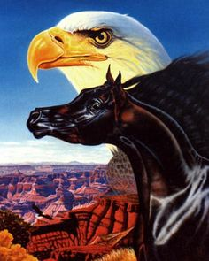 """Paintings by Vicki """"The Look of Eagles"""""""