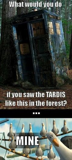 This would be my reaction! Doctor who. Tardis.