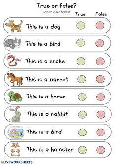 Pets online worksheet for 1º pri. You can do the exercises online or download the worksheet as pdf. English Activities For Kids, English Grammar For Kids, Learning English For Kids, English Worksheets For Kids, English Lessons For Kids, Reading Worksheets, Teaching English, Learn English, Preschool Curriculum
