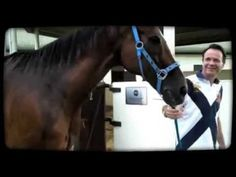 Equestrian sport and horse is our passion (episode 2) produced by Milly Leung