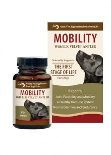 Mobility Pet Supplement for Dogs