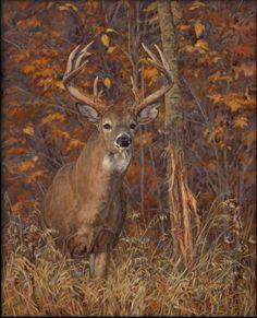 Ryan Kirby Wildlife Art | Ryan Kirby Wildlife Art - Original Oil Paintings and Wildlife Art ...