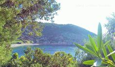 Rio nell'Elba: navette gratuite per le spiagge Da Stamp Toscana 24 luglio 2014