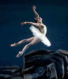 American Ballet Theatre - Swan Lake. This finale is so beautiful and almost brings me to tears